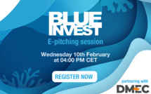 BlueInvest and DMEC (Dutch Marine Energy Centre) join forces to introduce marine energy solutions next 10th of February at 4:00 PM CET