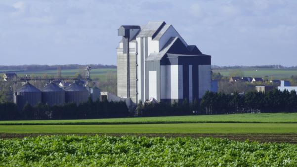 Webinaire : Tendances et Financements pour le Secteur Agroalimentaire