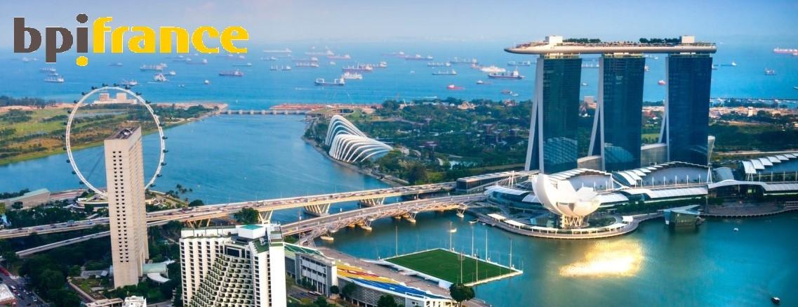 Webinaire France - Singapour : monter un projet innovant avec une entreprise singapourienne