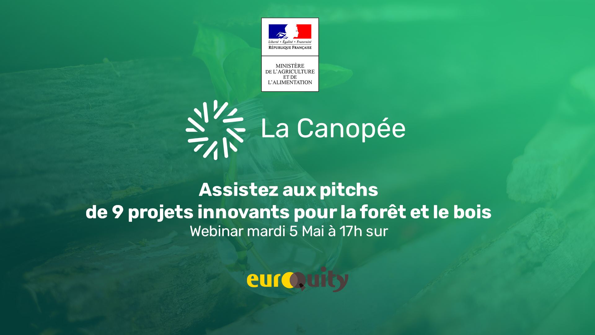 Mardi 5 mai à 17h - 9 projets innovants forêt-bois retenus pour le E-Pitch La Canopée?