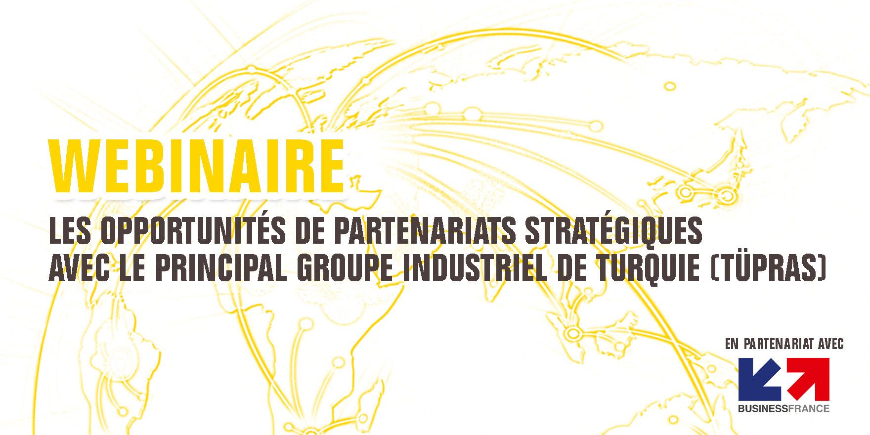 Webinaire : Les opportunités des partenariats stratégiques avec le principal groupe industriel de Turquie (Tüpraş)
