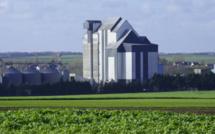 Retrouver webinaire : Tendances et Financements pour le Secteur Agroalimentaire
